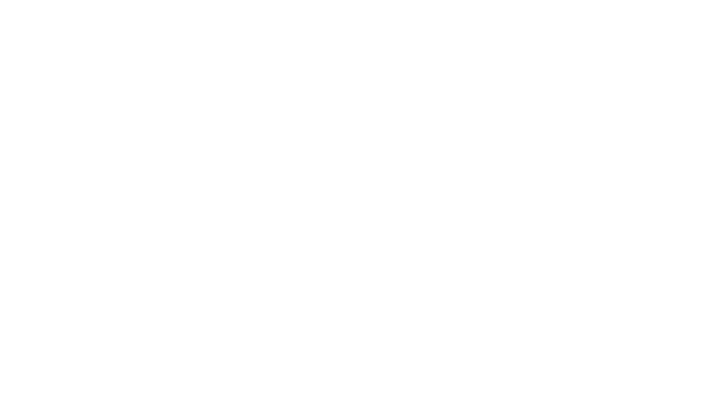 The-Crowd-Follows-Us