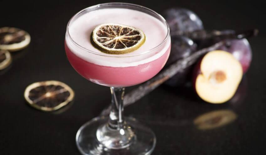 EG_Plum_Cocktail-2