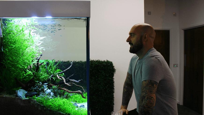 ViDERE Aquariums